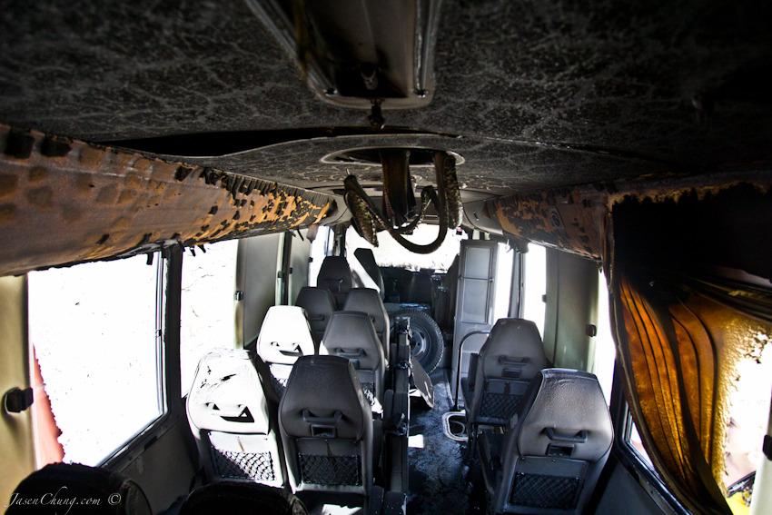 newwings-7845.jpg