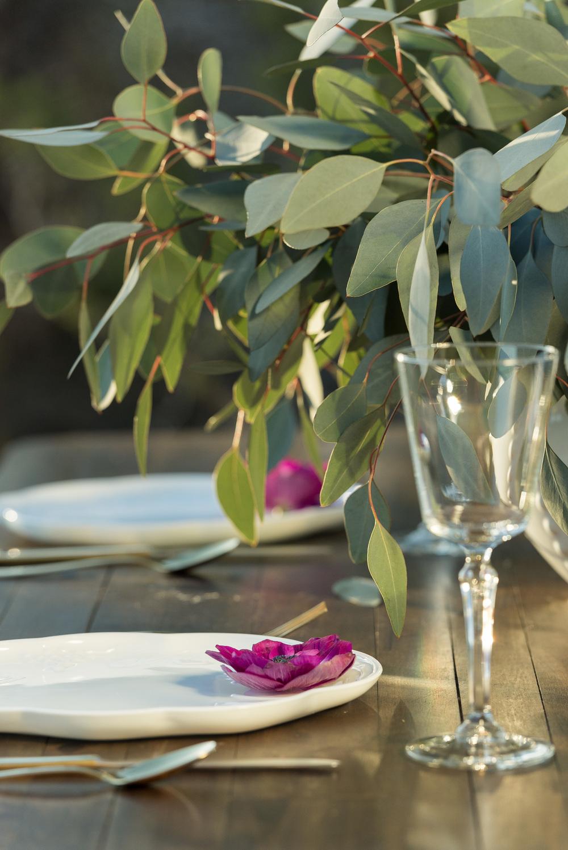 silver-dollar-eucalyptus-at-outdoor-wedding-barn