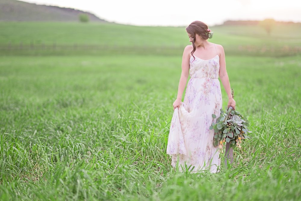 carrie johnson photography