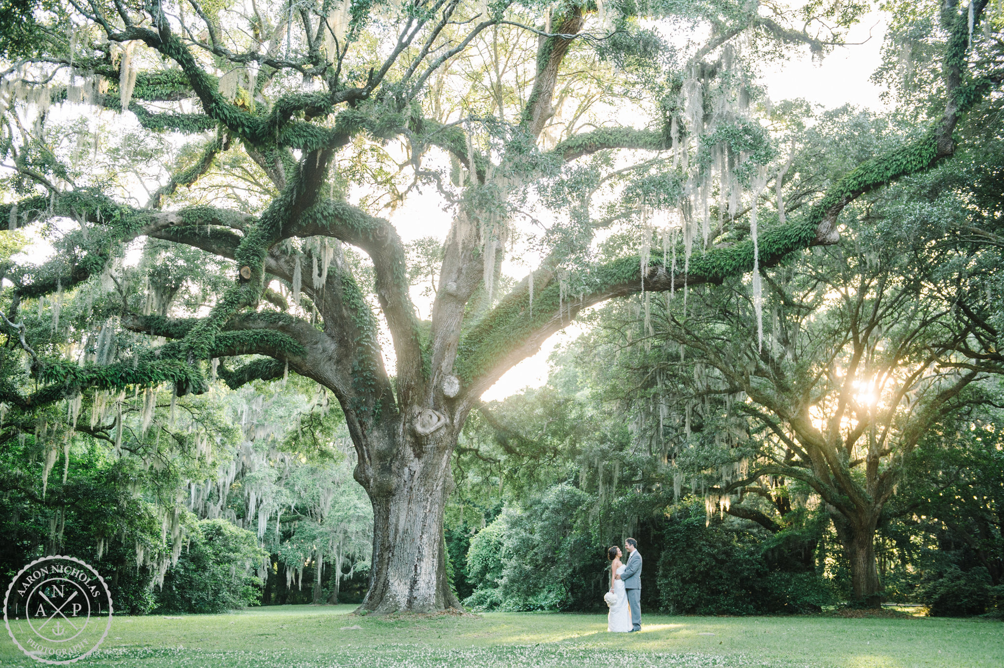 VENDOR GALLERY for Charline and Anthony s Legare Waring Hous-Charline -0446