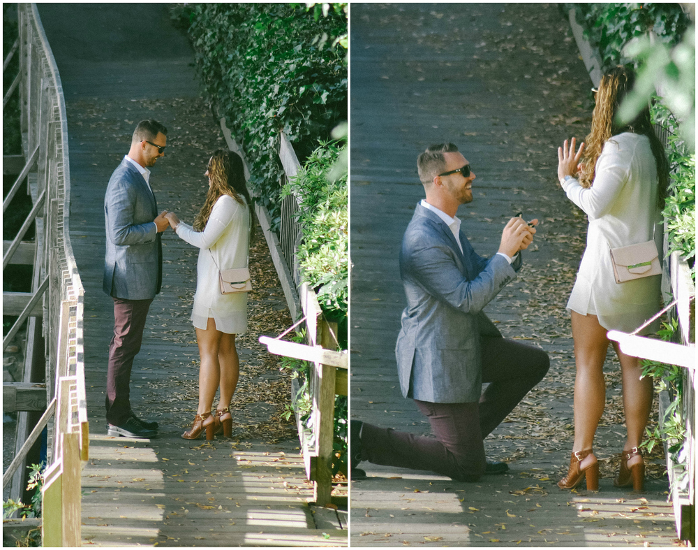 Carmel Proposal Collage 1.jpg