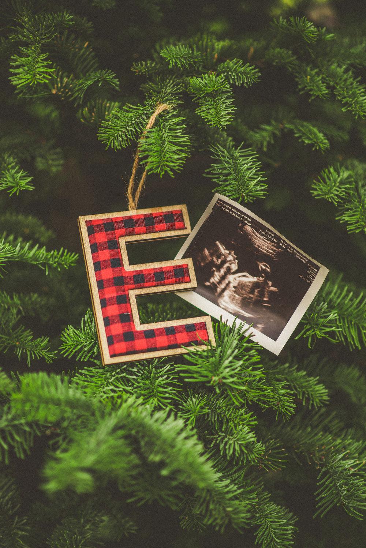 Harper Family-Maternity-19.jpg