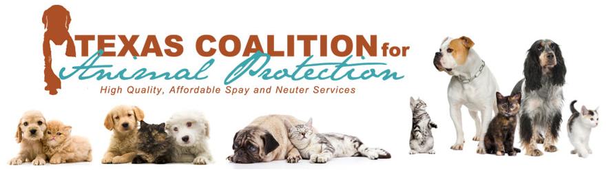 LOABROS & Texas Coalition for Animal Protection