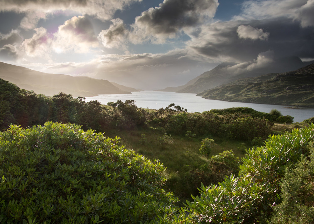 Killary Harbour from the side of the road.