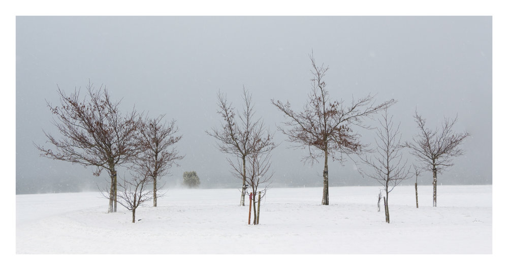 Snow day 3-2.jpg