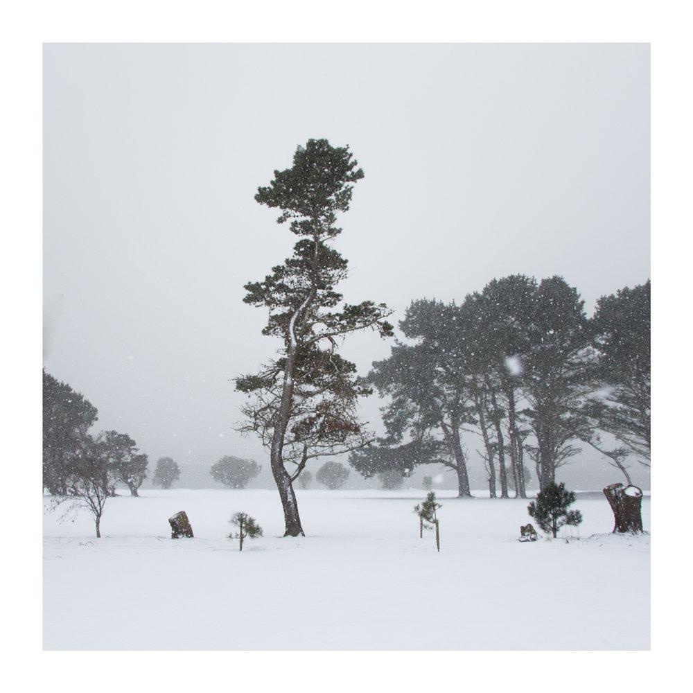 Snow day 9-2.jpg