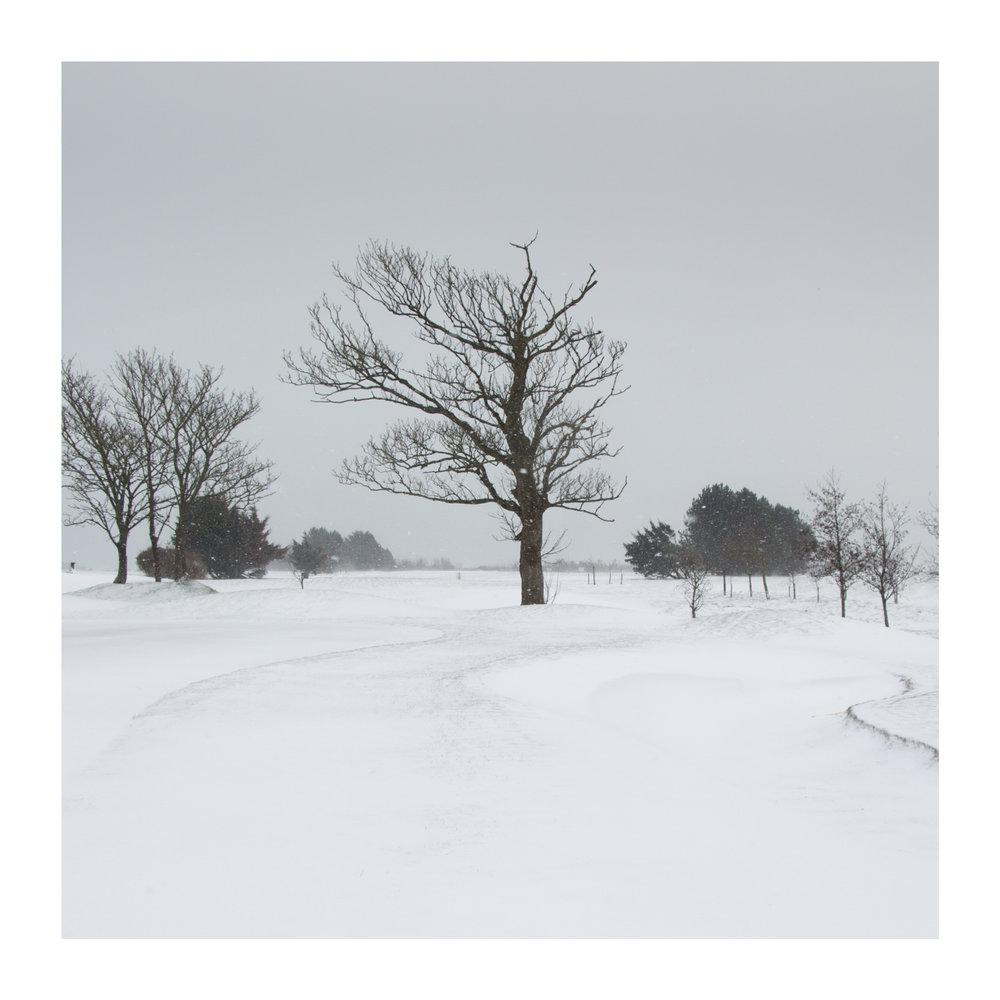 Snow day 10-2.jpg