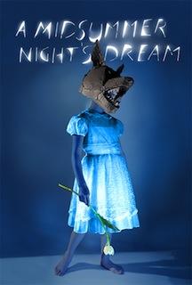 A Midsummer Night's Dream (2014) - Movie Review