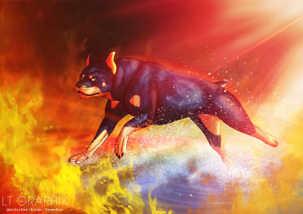 rottie-thru-fire-20150725.jpg