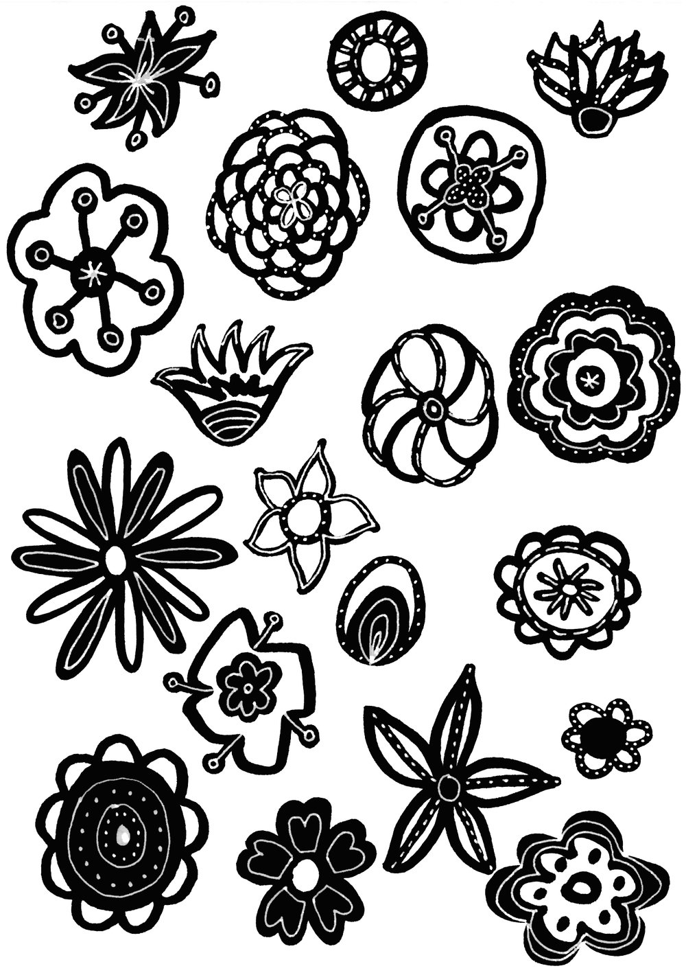 black white flowers drawing illustration nicole stevenson studio.jpg
