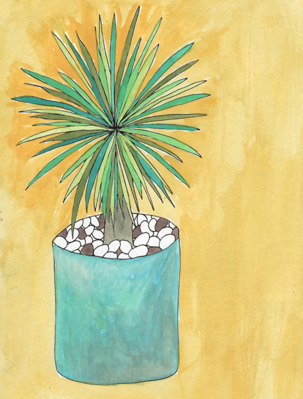 plant drawing palm nicole stevenson studio.jpg