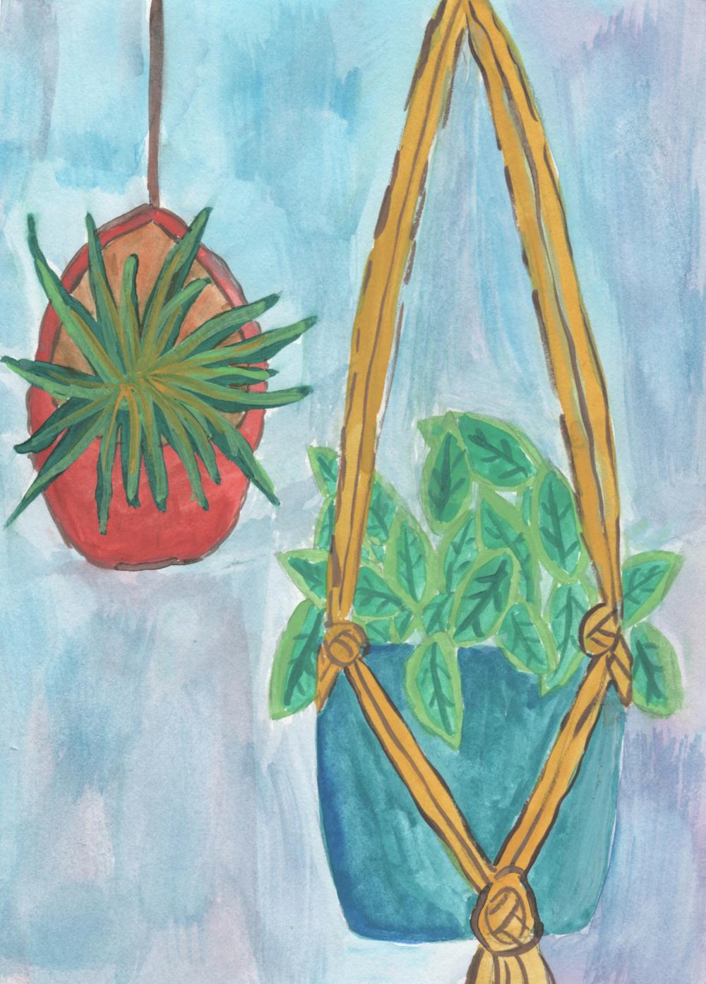macrame plant hanging drawing nicole stevenson studio.jpg
