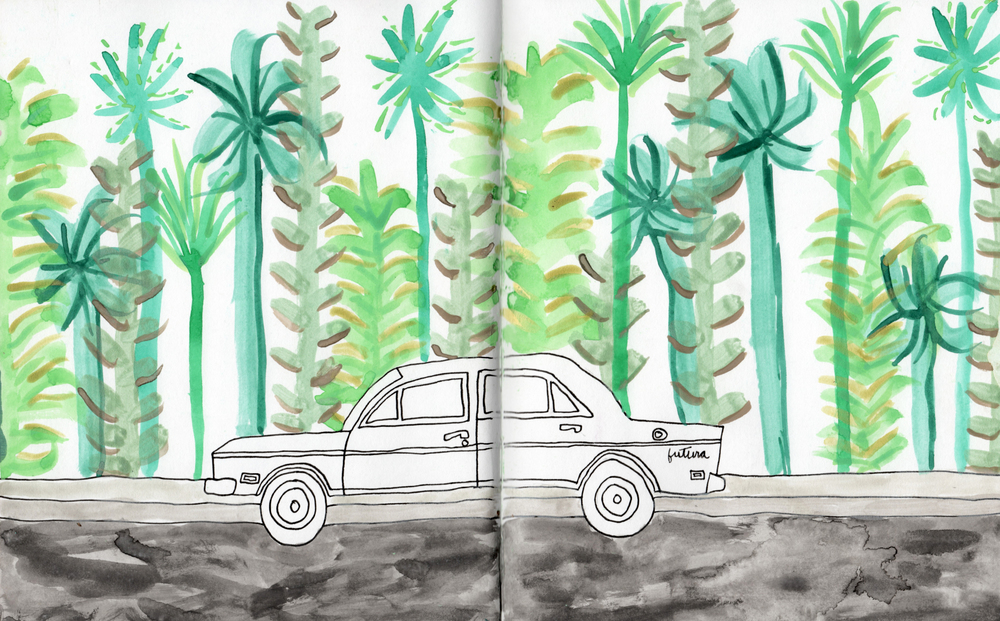 vontage car and palm trees nicole stevenson studio.jpg