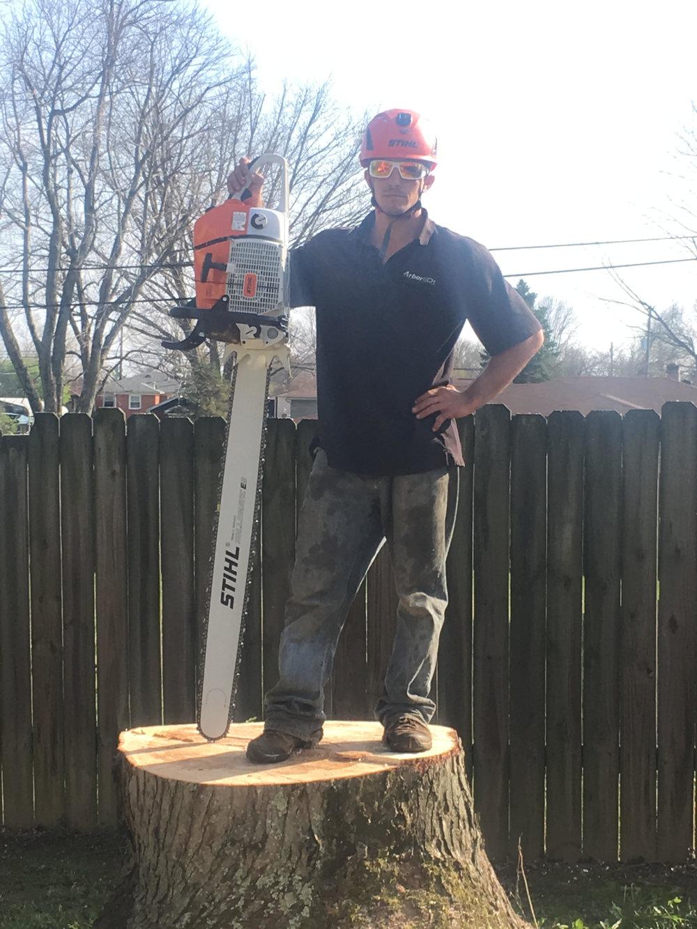 ArborTech Tree Removal-Louisvill-Blog4.jpg