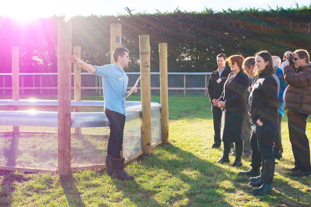 Tom Agnew (ZIP Animal Behaviour Technician) demonstrates jumping heights of invasive predators next to the 'internal cell' in the enclosure where the team is developing a low profile predator fence for potential application on farms and at dairy production sites.