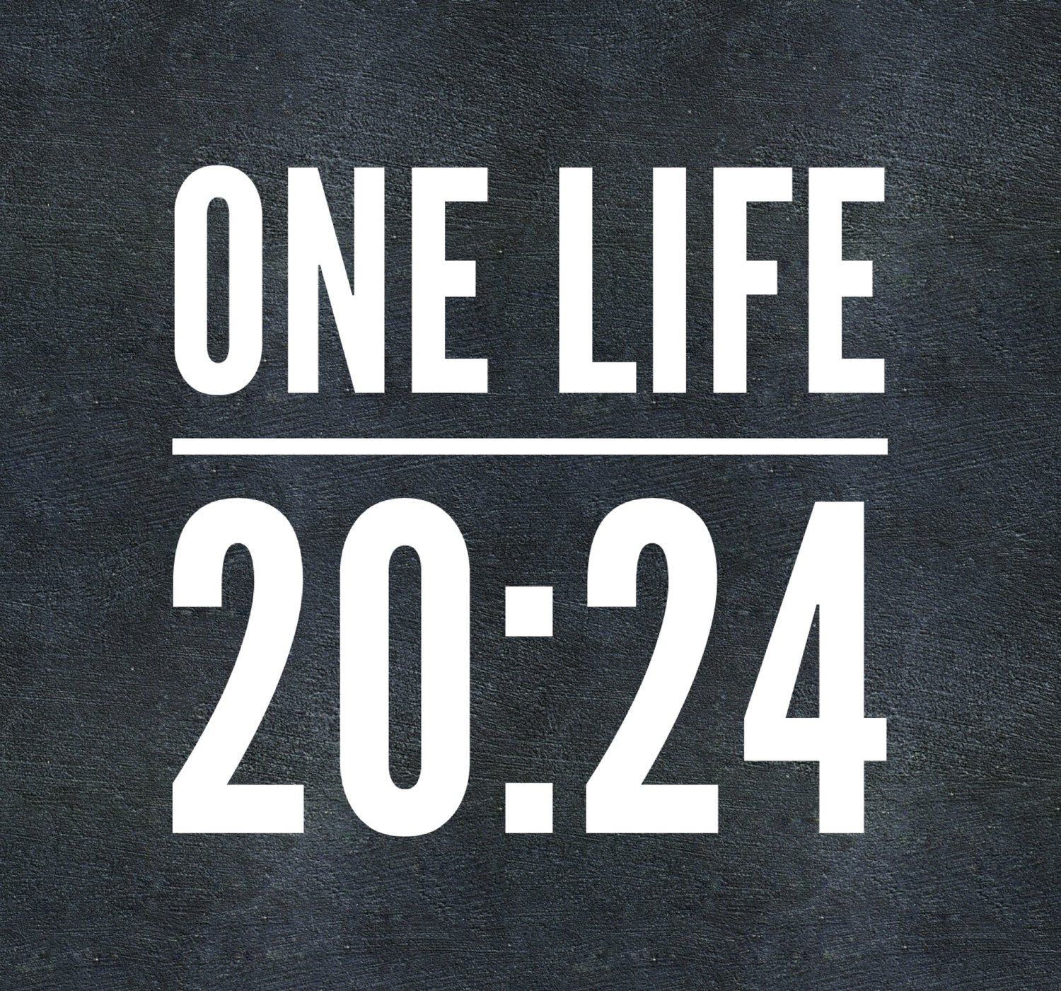 ONELIFE 20:24