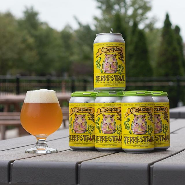 Back by popular demand, @terrestrialbrewingcompany Citropopatomus White IPA.  Find it at your favorite retail locations this week!