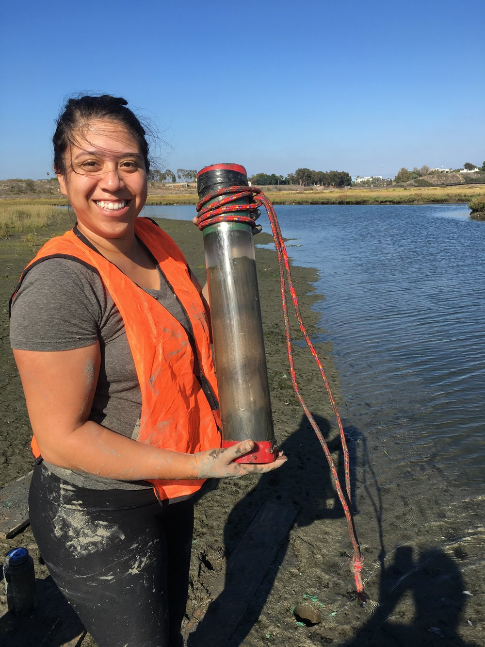 D. Cortez collecting a core from the mudflat.
