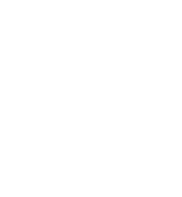 Joe Brottman Art