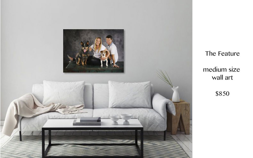 Gallery Wrap Canvas from - $630