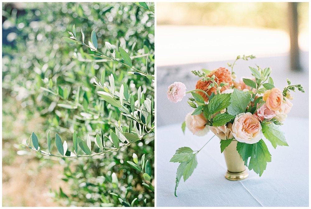Red_Ridge_Farm_Durant_Vineyard_Wedding3.jpg