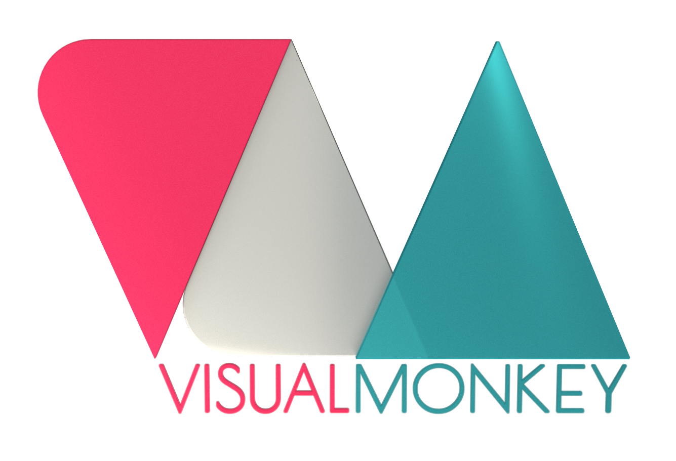VISUAL MONKEY