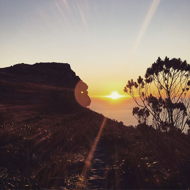 Feeling a solid 12 on the happiness graph as I get ready for work after the most memorable 14 hours: climbed up Table Mountain with hardly a trace of wind, slept in a cosy Wes Anderson hut (red wine, dark chocolate and fun chats included) and hurried down the mountain at dawn. Thanks @lewiswolf for gifting us with this magic!