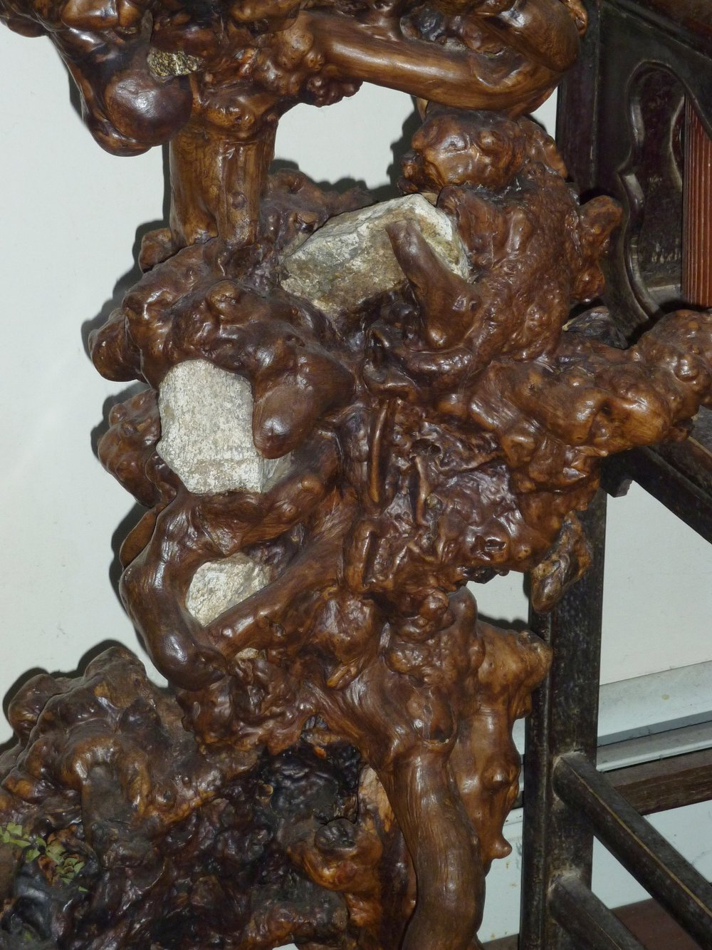 Wood burl root plant stand, China, mid 20th century, detail.
