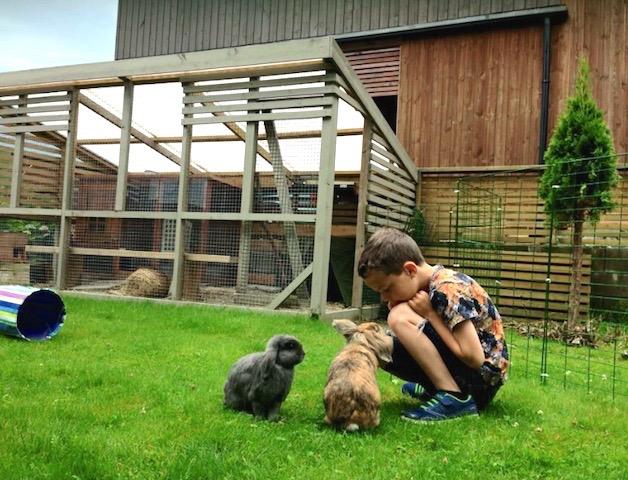 Lars synes kaninene er kjempespennende. Han har et godt forhold til dyrene og vet at han ikke får løpe etter dem eller plukke dem opp. Kaninene er trygge og kommer bort for å snuse på den lille gutten. Når de vil løpe videre får de lov til det. Se den fine kaningården deres med eget kaninhus i bakgrunnen.  Foto: Grete Hovelsen