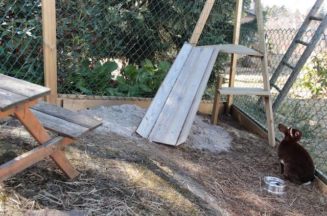 Elias i hjemmelaget kaningård. Her har man snekret en ramme og festet revenetting i vegger og tak.  Foto: Tanja Furuset