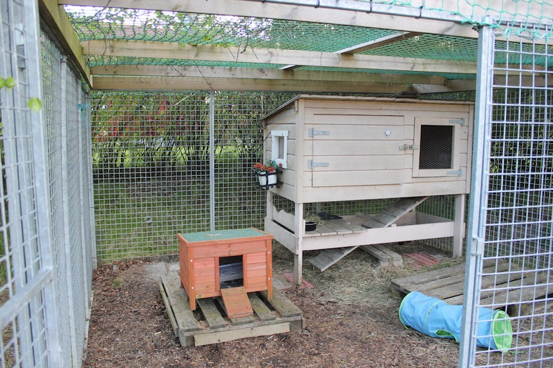 Et isolert kaninhus i en hundegård  Foto: Marit Emilie Buseth