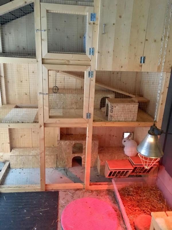 Kaninhyller, dokasse og isolert hule