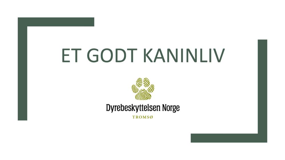 Skjermbilde 2018-01-29 kl. 17.39.51.png