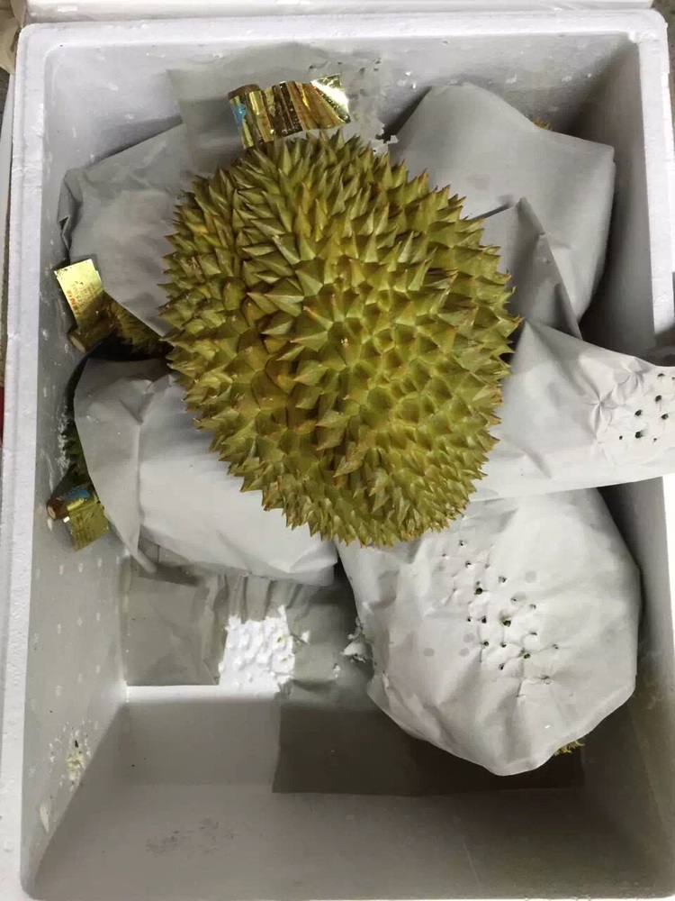 Durian 2.jpg
