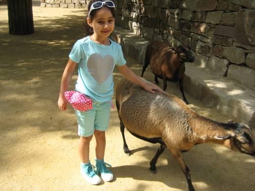 Rihab verbringt zusammen mit ihrer Patin einen schönen Tag im Zoo Hannover.