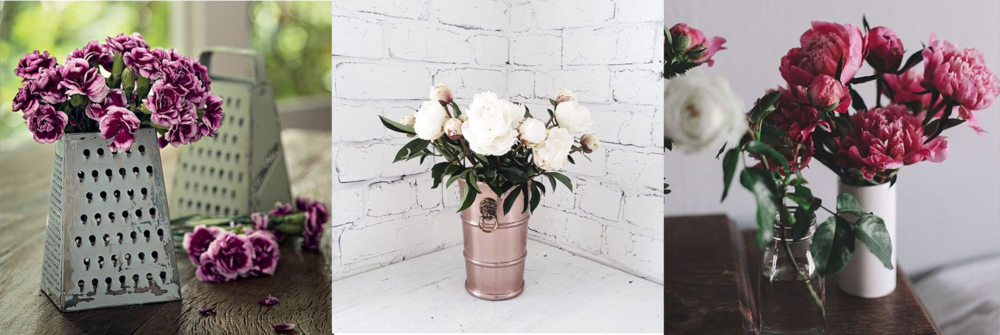 flores-1.png