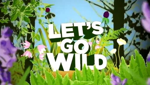 BSLBT: Let's Go Wild