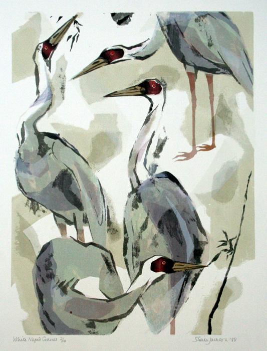 White Naped Cranes