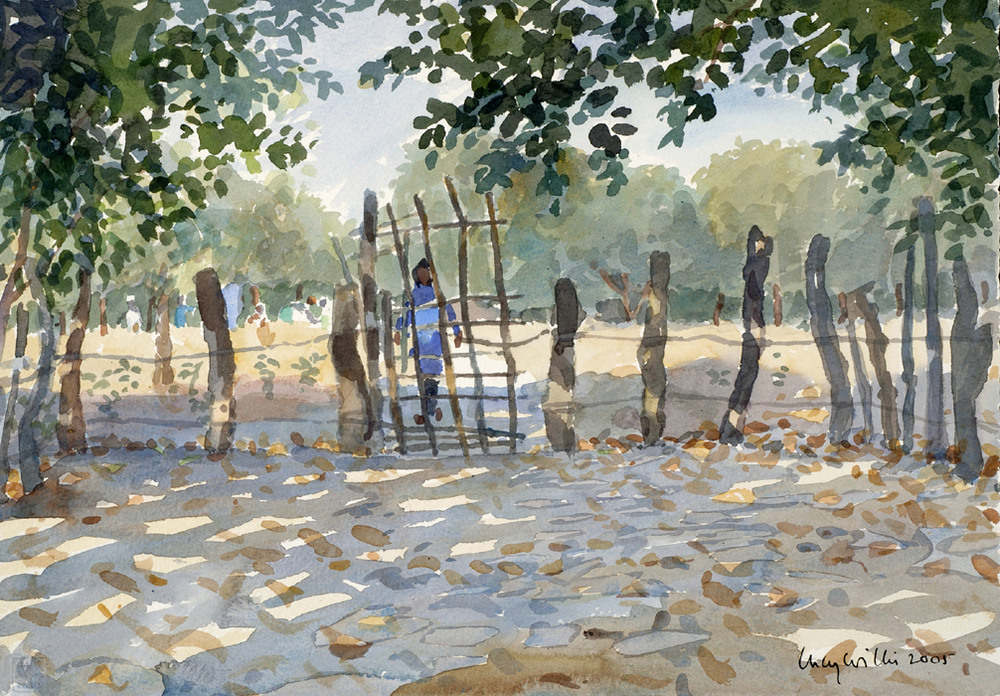 Under The Cashew Trees, Senegal