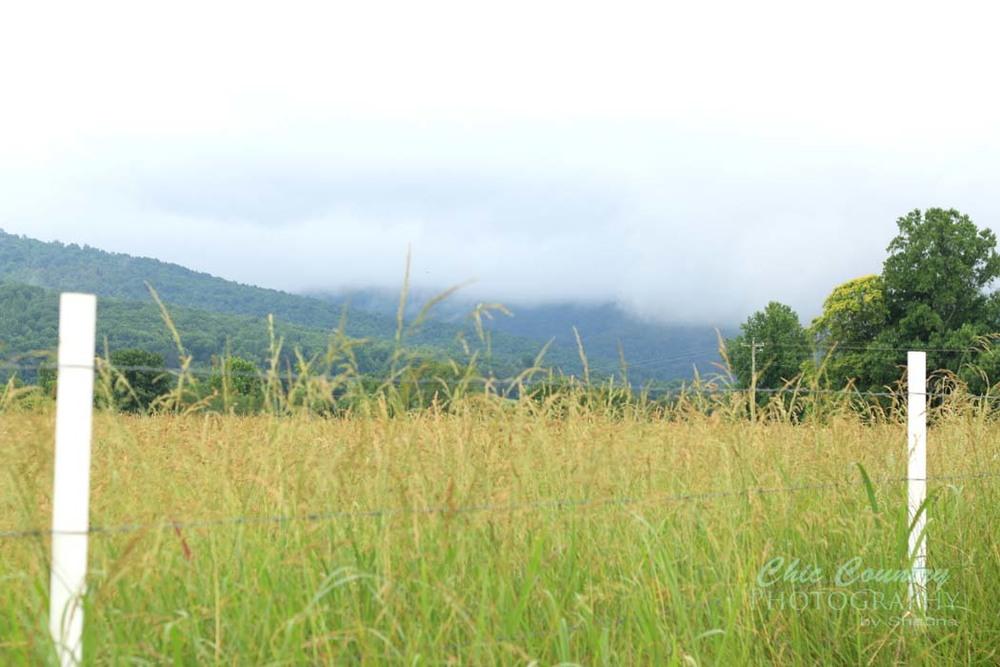 fence-fog-mountains_w.jpg