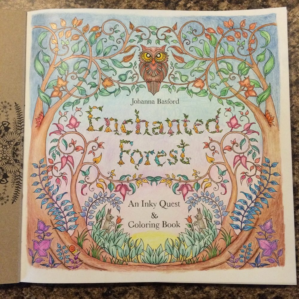 Enchanted Forest Coloring Book Shauna Hargis