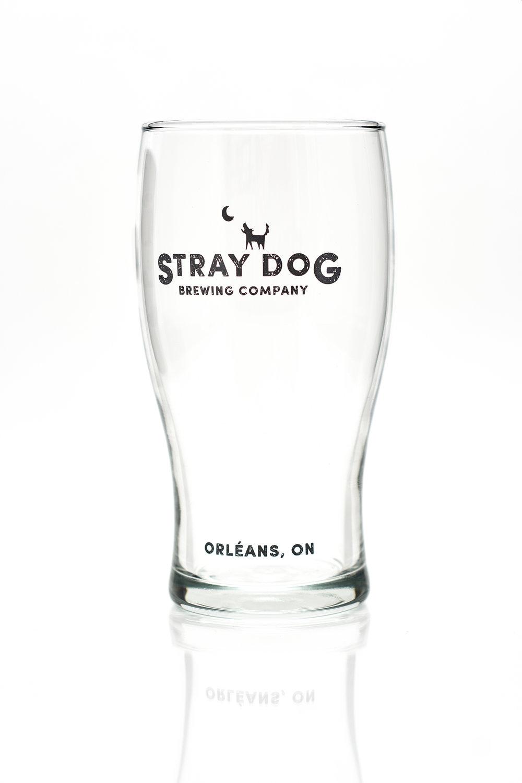 Stray Dog0063.jpg
