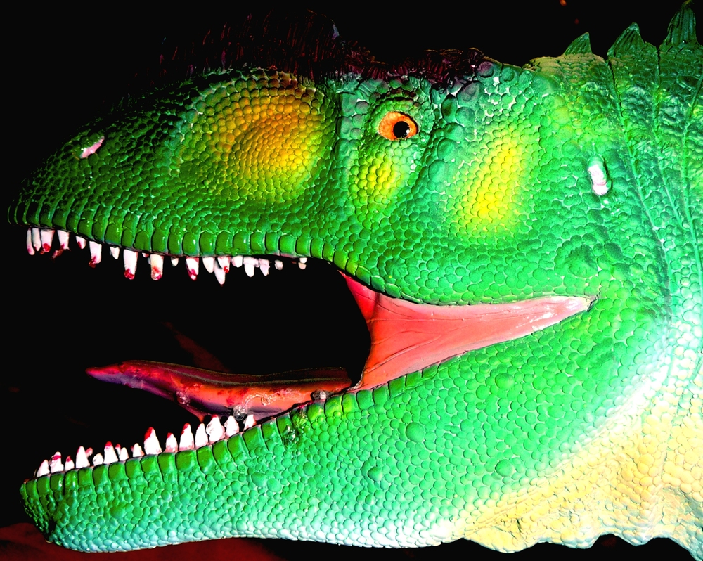 Dinosaur Expeditions Logo 2011