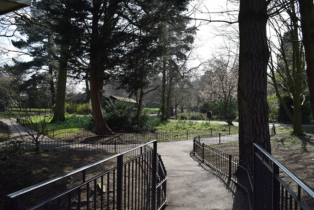 Peckham Rye Park is designated a Borough site of Importance for Nature Conservation (SINC). The Park has a mixture of habitats from a lake, streams to woodland, specimen trees and meadows.
