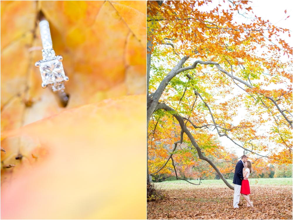 Hayley & Jason Engaged-163_anna grace photography maryland engagement photographer hampton historic mansion.jpg