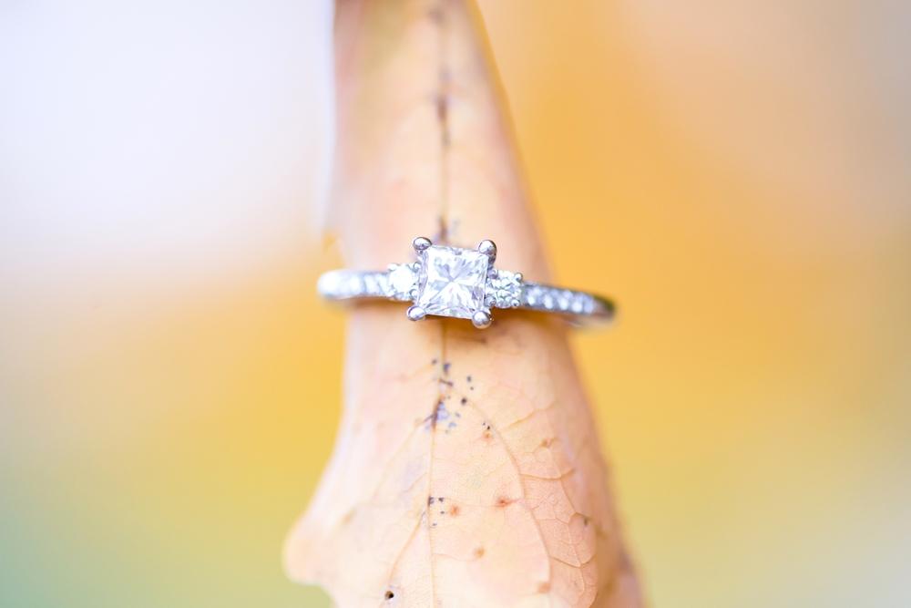 Hayley & Jason Engaged-167_anna grace photography maryland engagement photographer hampton historic mansion.jpg