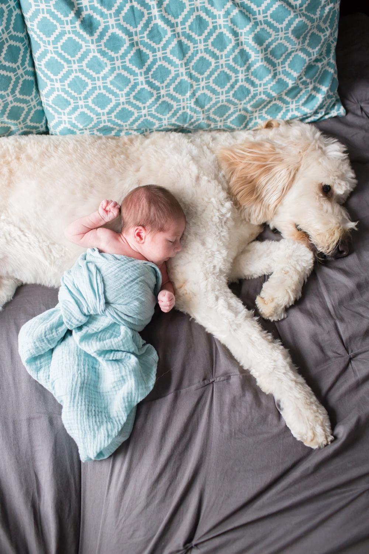 Rineer Newborn 2015-106_anna grace photography maryland newborn photographer baltimore.jpg
