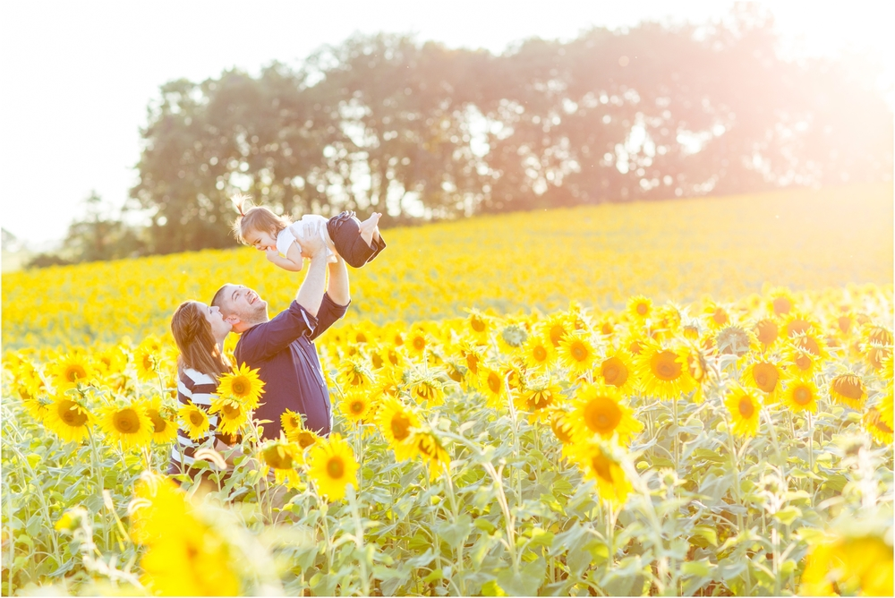 Jenny-Nick-Sunflowers-84.jpg