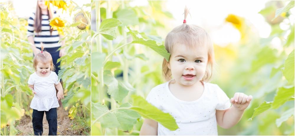 Jenny-Nick-Sunflowers-119.jpg