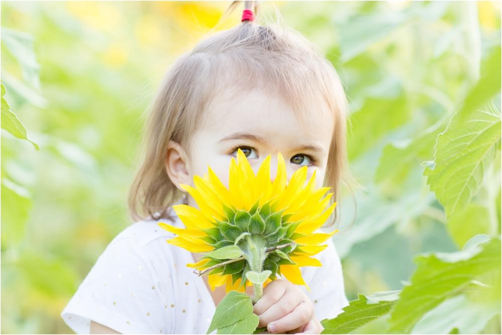 Jenny-Nick-Sunflowers-141.jpg